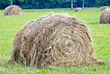 Agriculture - Bales of Hay stock photo