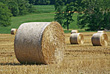 Agriculture - Field with Bales of Hay stock image