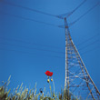 powerlines tower industrial electricity industry energy stock image