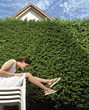 privacy landscaping leisure people sit fence stock photo