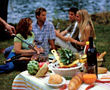 Cookout chatting people sausages friends picnicking meat stock image