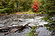 Algonquin Park Muskoka Ontario Fall Autumn Colors stock image