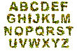 Alphabet Letters From Green Maple Leaves stock photo