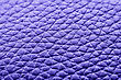 Animal Skin Texture Of The Close Up stock photography