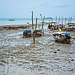 Asian Longtails In Low Tide, Thailand