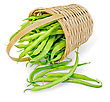 Asparagus Green Beans In A Wicker Basket Isolated On White Background stock image
