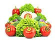 Assorted Fresh Vegetables stock photography