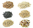 Assortment Of Raw Beans stock photography