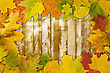 Halloween Autumn Background With Colored Leaves On Wooden Board stock photography