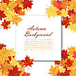 Autumn Frame With Blank Sheet Of Paper And Maple Leaves Over And Under It. Over White Background. Elegant Design With Text Space And Ideal Balanced Colors. Vector Illustration