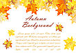 Autumn Frame With Falling Maple Leaves On White Background. Elegant Design With Text Space And Ideal Balanced Colors. Vector Illustration