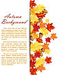 Autumn Frame With Maple And Oak Leaves And Berries Over White Background. Elegant Design With Text Space And Ideal Balanced Colors. Vector Illustration