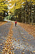 Autumn Leaves On Road Northern Michigan Child On Bicycle Bike stock photo