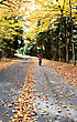 Autumn Leaves On Road Northern Michigan Child On Bicycle Bike stock image