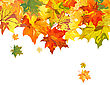 Autumn Maple Leaves Background. Vector Illustration Without Transparency EPS10 stock illustration