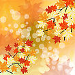 Autumn Maples Falling Leaves Background. Vector Illustration With Trancparency EPS10. stock vector