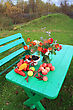 Autumn Still Life On Green Table