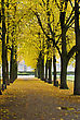Autumnal Park In The Center Of Bonn, Germany stock image