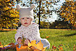 Baby With Maple Leaf Playing In The Park stock photography
