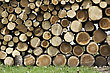 Background Of Cut Wood Logs Stacked In A Pile stock photo