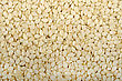 Background From The Raw White Sesame Seeds, Close-up stock photography