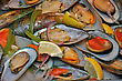 Background Of Green-lipped Mussels Ready To Serve stock image