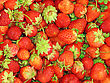 Background Of Fresh, Delicious Strawberries stock photography
