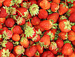 Background Of Fresh, Delicious Strawberries stock image