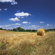 Bale Of Hay In The Fields stock photography