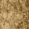 Bark Of Birch In The Cracks Texture. Vector Illustration