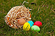 Basket With The Colorful Easter Eggs On The Grass