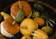 Basket with Gourds stock photo