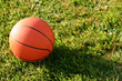 Basketball in Grass stock image