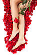Beautiful Body And Legs Of Woman Against Petals Of Red Roses With Flower