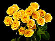 Beautiful Bouquet Of Yellow Roses stock photography