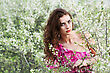 Beautiful Brunette Wearing Pink Dress Posing In Flowering Trees stock photography