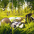 Beautiful Forest Contaminated Waste And Garbage stock photo