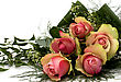Posy Beautiful Roses stock image