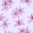 Beautiful Seamless Wallpaper With Blooming Lilies With On Background