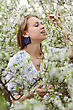 Beautiful Young Blond Woman Touching The Branch Of Flowering Tree stock photo