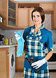 Beauty Housewife With Duster And Detergent stock photography