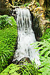 Beauty Small Waterfall In The Deep Jungle stock image