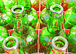 Array Beer Bottles Of Green Glass. Empty Green Bottlse In Box stock photography