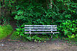 Typography Bench In The Woods In High Dynamic Range stock photography