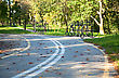Bicycle Road In The Green Autumn Park stock image