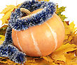 Big Pumpkin Lays On Autumn Leaf stock photography