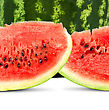 Big Red Watermelon stock image