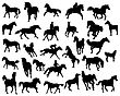 Big Vector Collection Of Different Horses Silhouettes