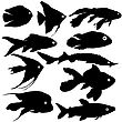 Black Set Silhouette Of Aquarium Fish On White Background