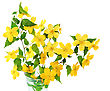 Bouquet Marsh Marigold Yellow Wildflowers In Vase stock photo
